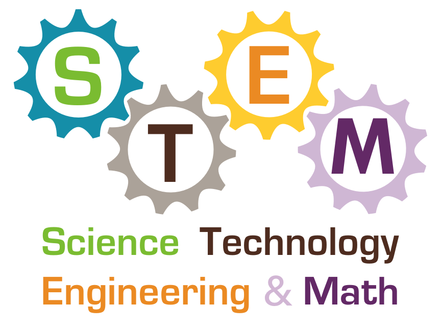 Image result for stem